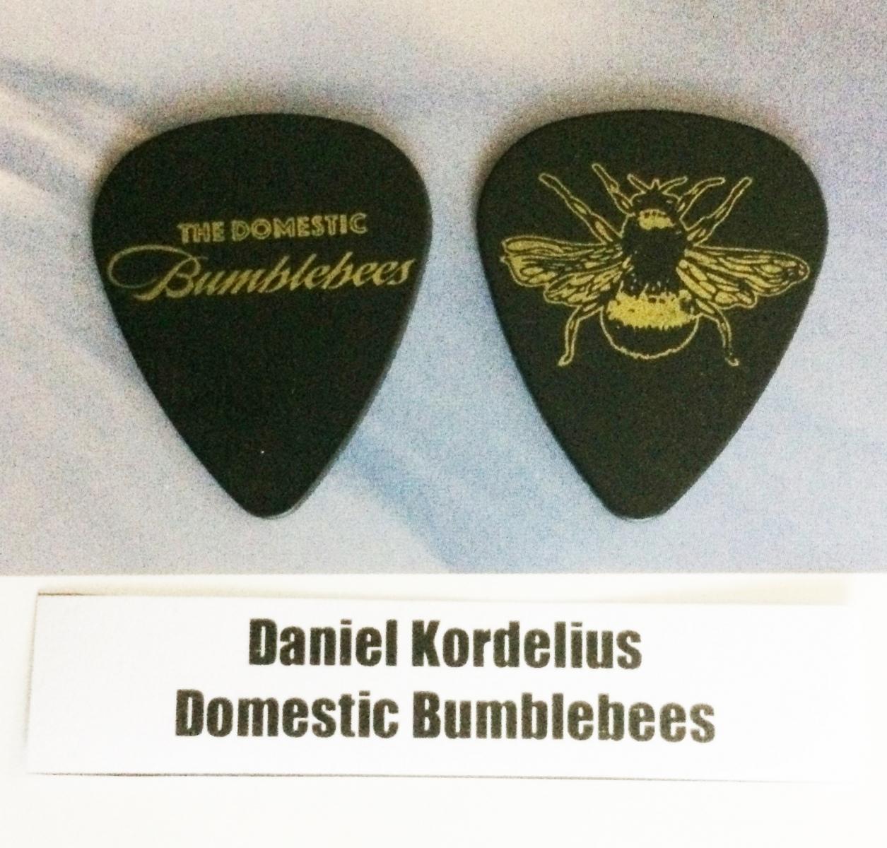 Daniel Kordelius